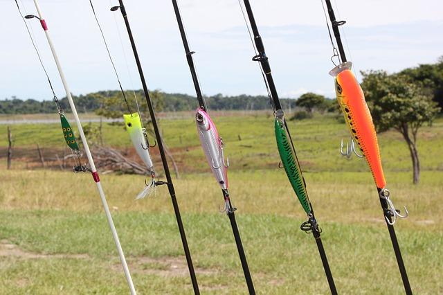 rybářké pruty, rybky, návnady
