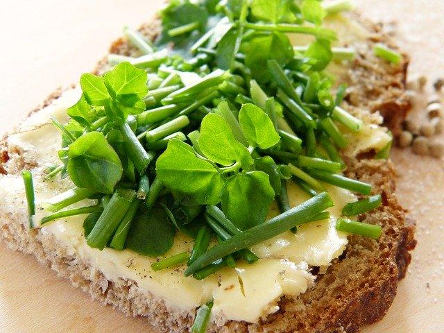 rostlinné klíčky na chlebu